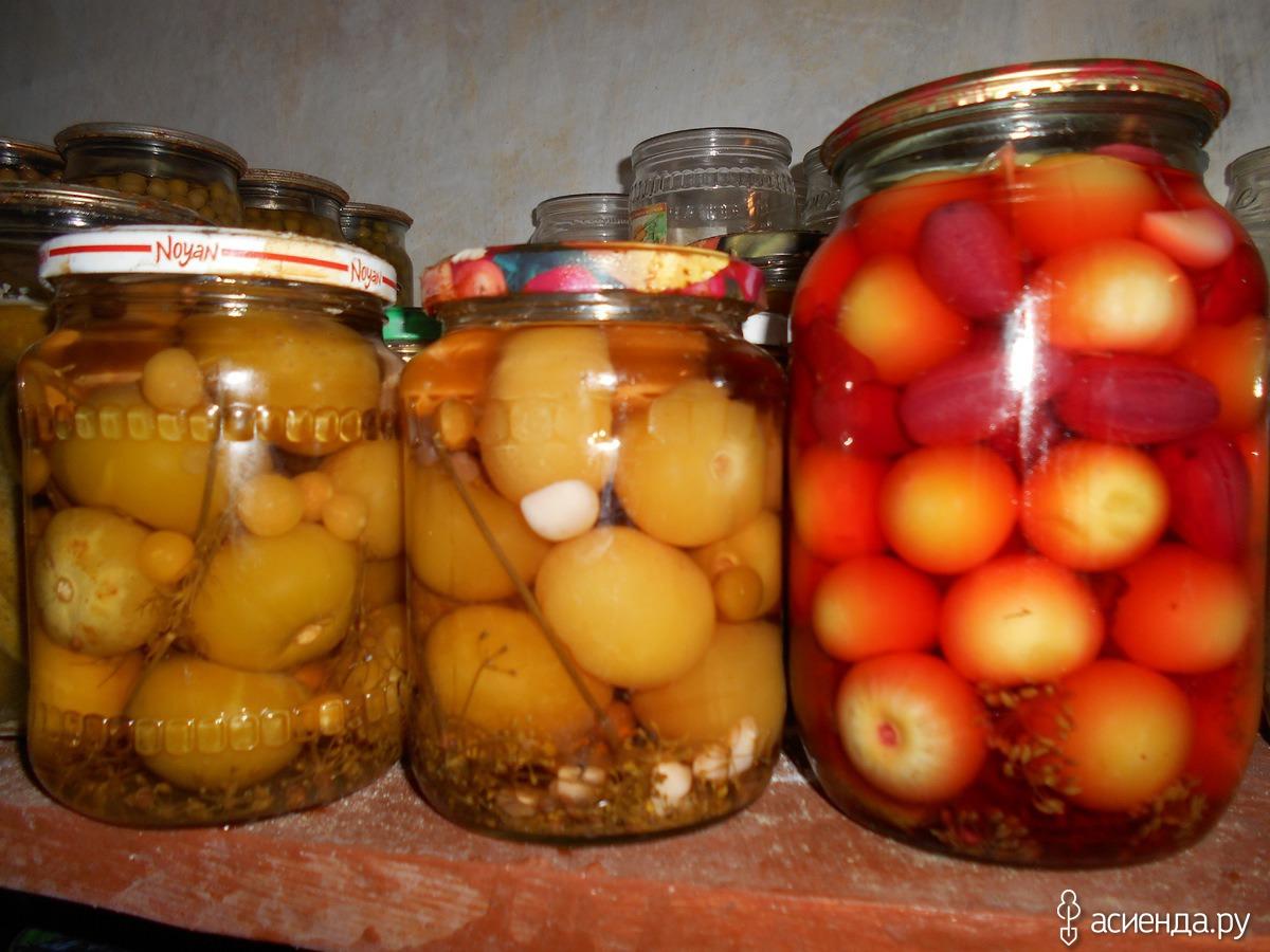 Заготовка овощного физалиса на зиму методом консервирования и сушки, можно ли замораживать