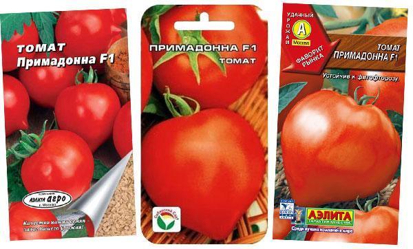 7 лучших гибридов томатов для теплиц, самые сладкие и вкусные сорта, отзывы