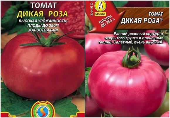 Томат дикая роза: описание сорта, отзывы, фото, урожайность   tomatland.ru