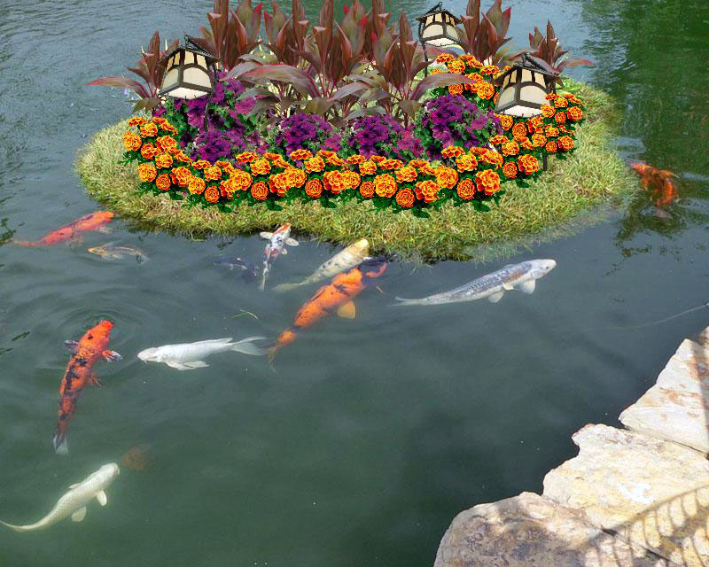 Плавающие клумбы: как сделать миниатюрный сад наводе — викистрой