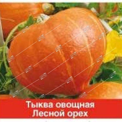 Тыква f1 лесной орех