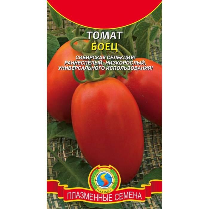 Томат буян: топ отзывы, секреты выращивания, характеристика с фото