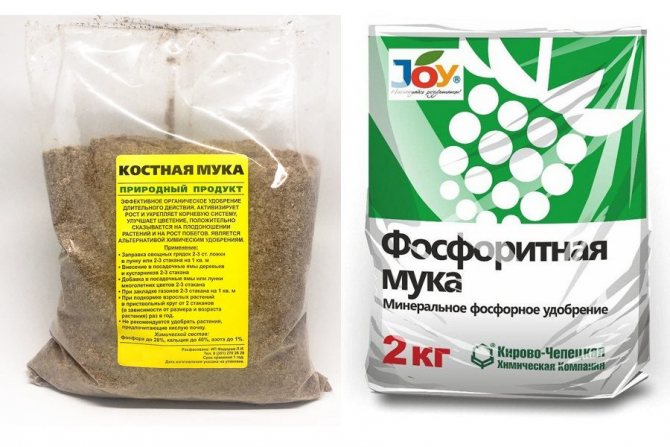 Нитрофоска: состав удобрения, свойства, особенности применения