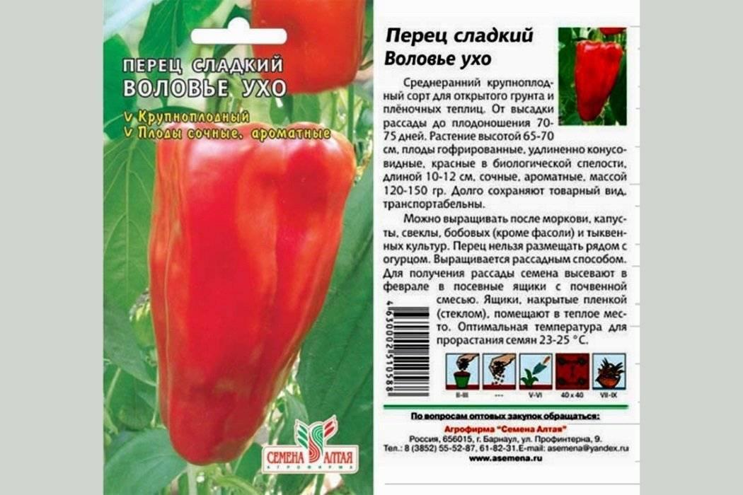 Перец воловье ухо - описание сорта, характеристика плодов, фото, отзывы огородников
