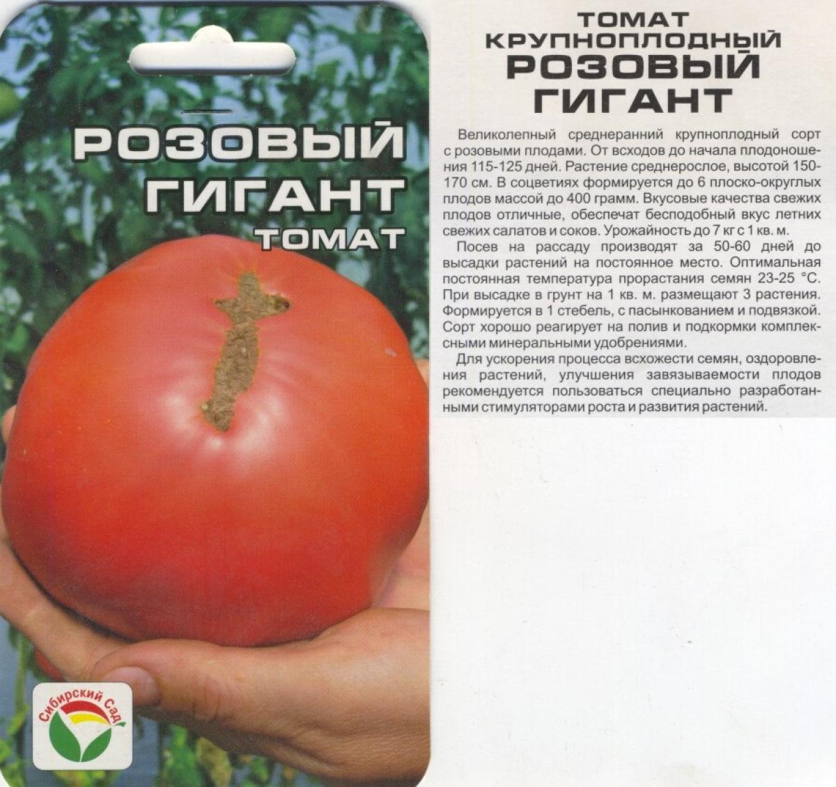Томат малиновый великан: описание сорта, отзывы, урожайность