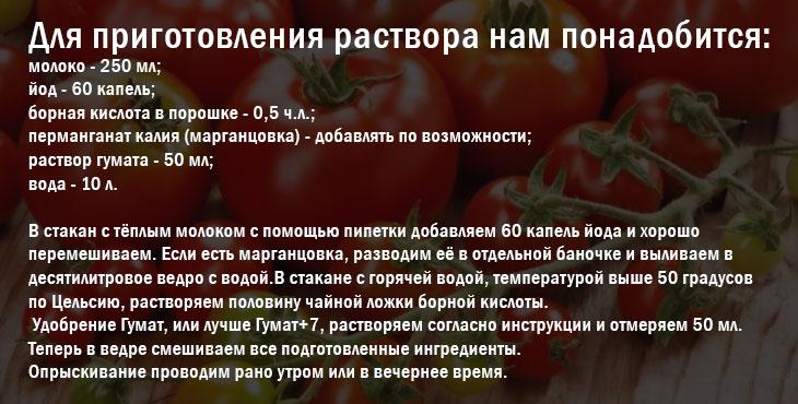 Пропорции борной кислоты для помидор: как развести бор для томатов, приготовление раствора для опрыскивания и полива, рецепт для борьбы с болезнями