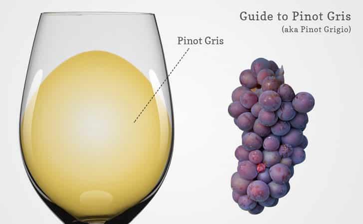 Сорт винограда пино: гриджио, менье, гри, блан, фран, история селекции, описание сорта