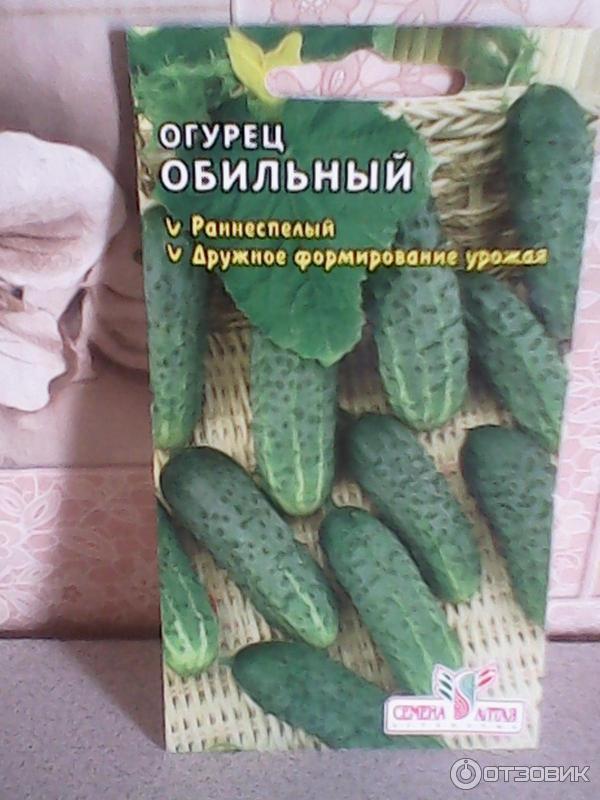 Огурец обильный: отзывы и фотографии, характеристика сорта, выращивание и уход