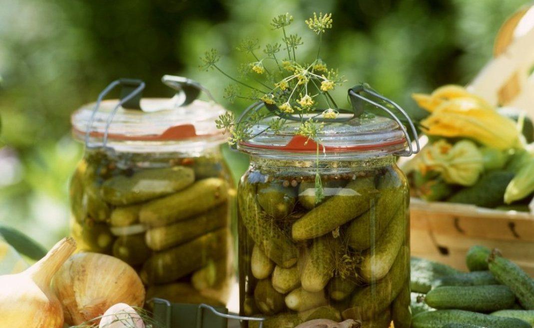 Маринованные баклажаны по-азербайджански: 6 лучших рецептов как солить с фото