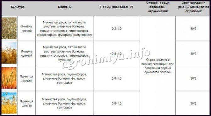 Инструкция по применению фунгицида скор, дозировка и спектр действия