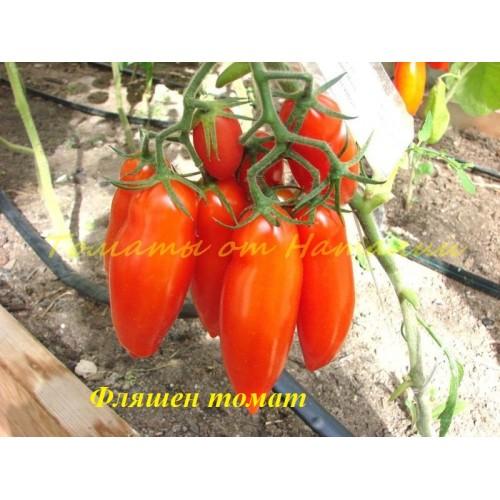 Томат фляшентоматен: описание сорта, характеристика, выращивание, отзывы, фото