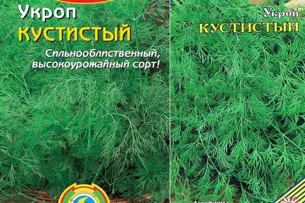 ✅ укроп кибрай: характеристика и описание сорта, фото, выращивание и уход - tehnoyug.com