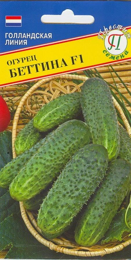 Огурец беттина f1 - описание сорта, уход, выращивание и отзывы