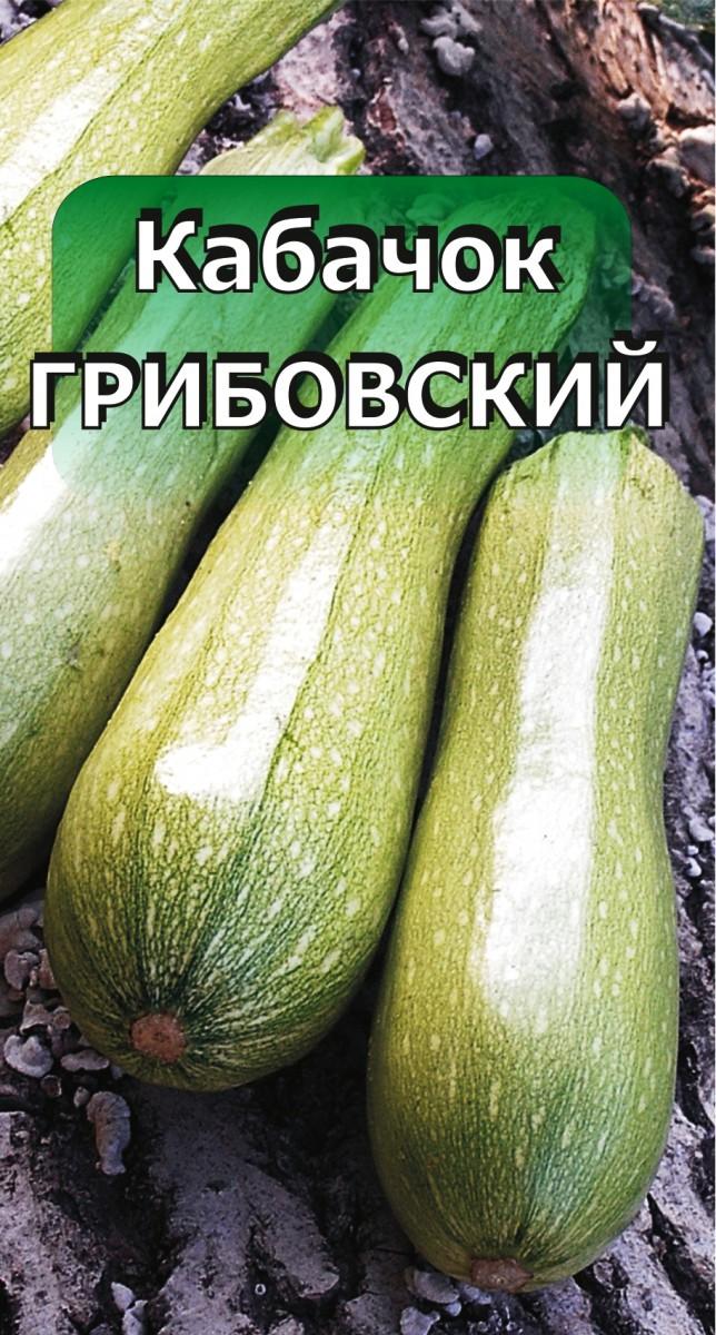 Как вырастить кабачок: от подготовки семян до уборки урожая
