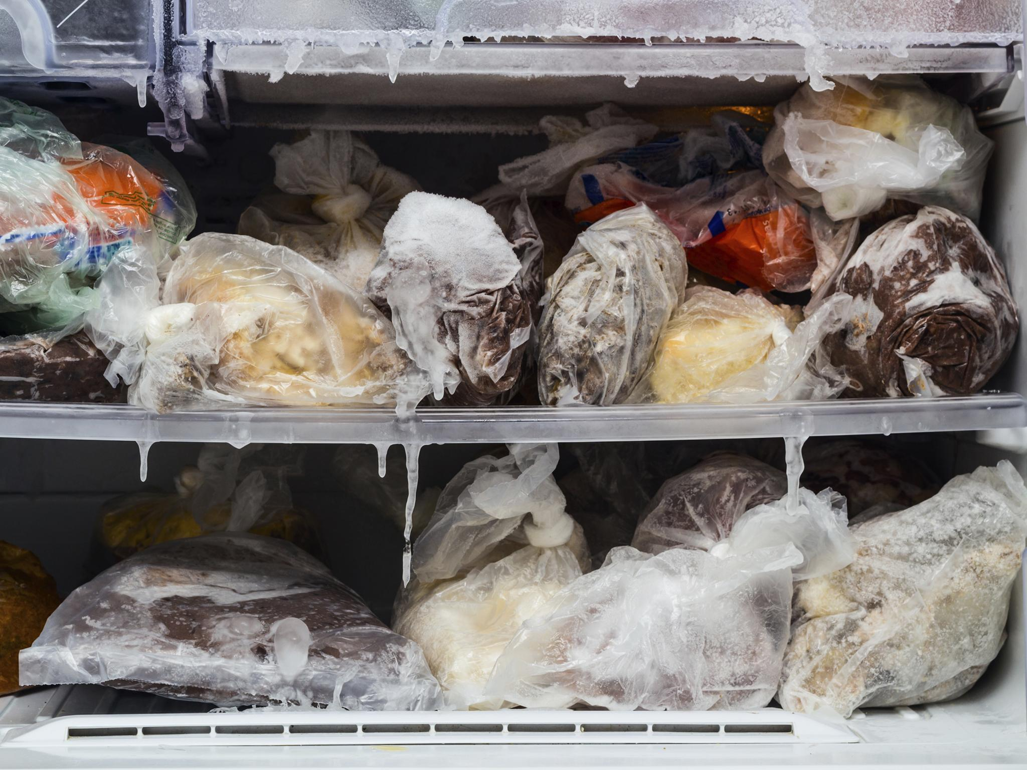 Как заморозить белые ит другие грибы на зиму в морозилке
