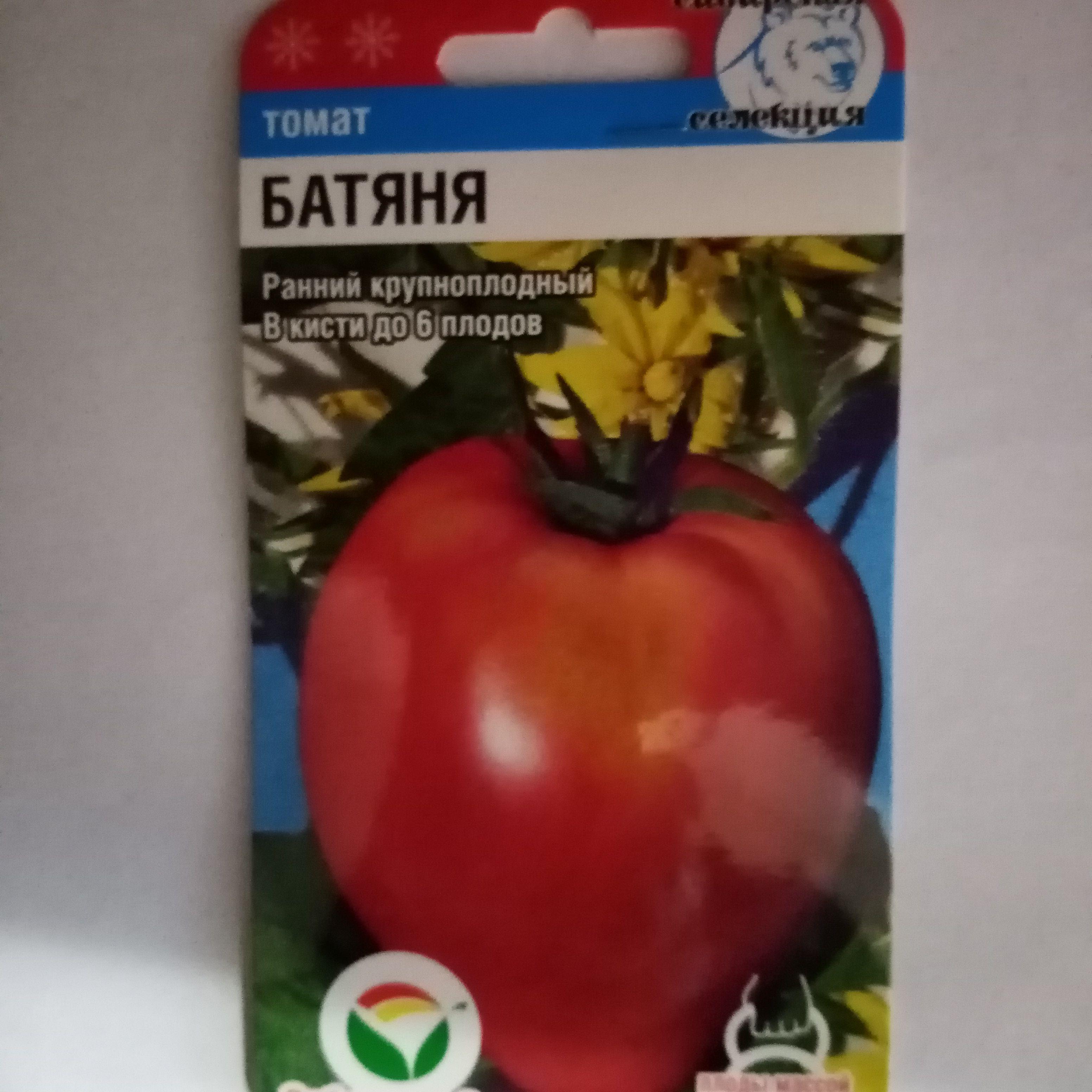 Томат батяня: описание и характеристика сорта, фото и отзывы, особенности выращивания помидоров