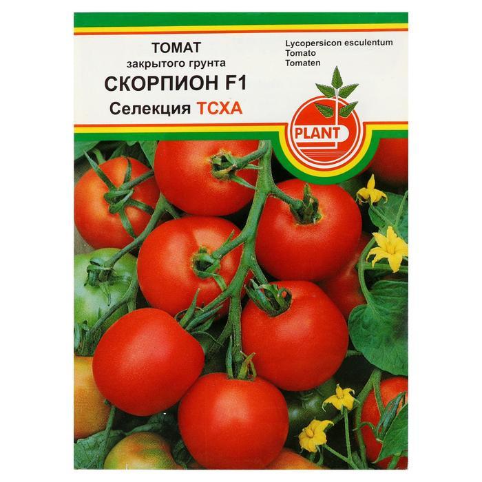 Выращивание индетерминантных томатов в теплице: выбираем лучшие высокорослые сорта