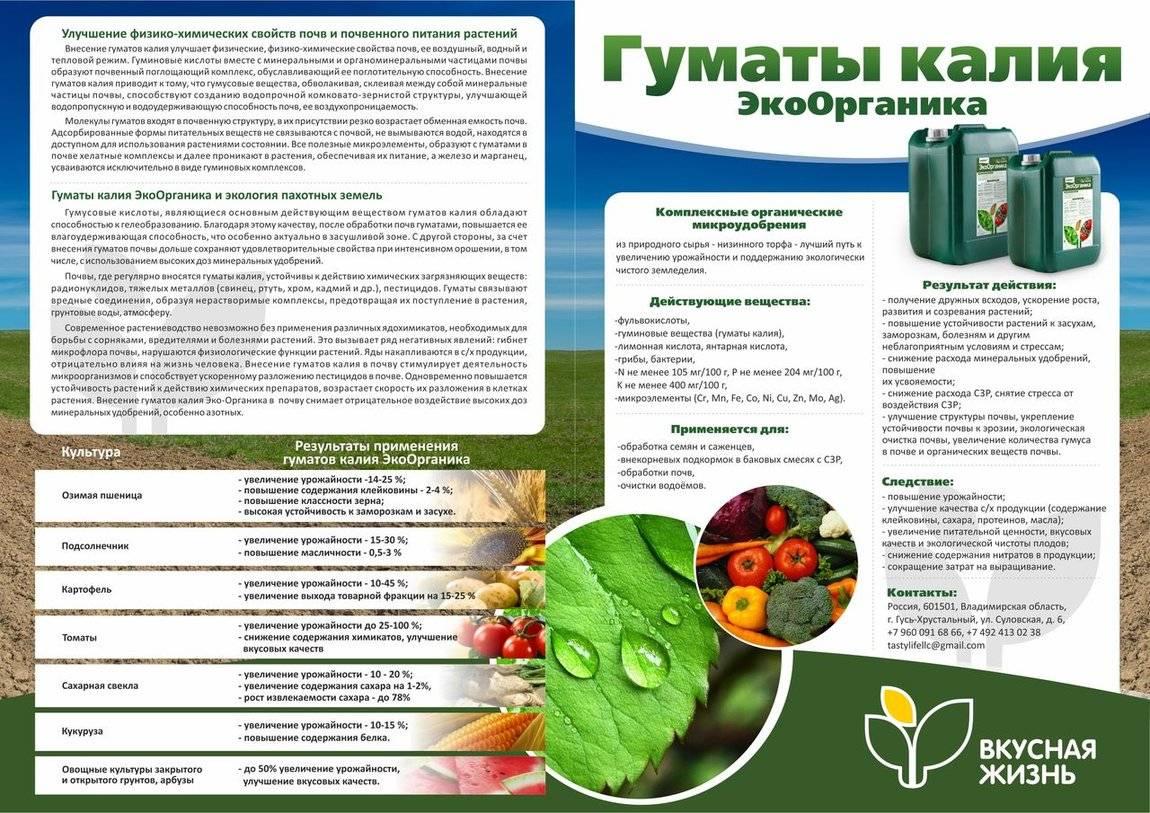 Гумат калия — инструкция по применению и что это такое; удобрения в жидкой форме и «суфлёр»