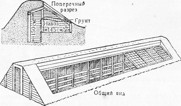 Устройство теплицы-термоса (48 фото): как построить подземную или заглубленную конструкцию своими руками