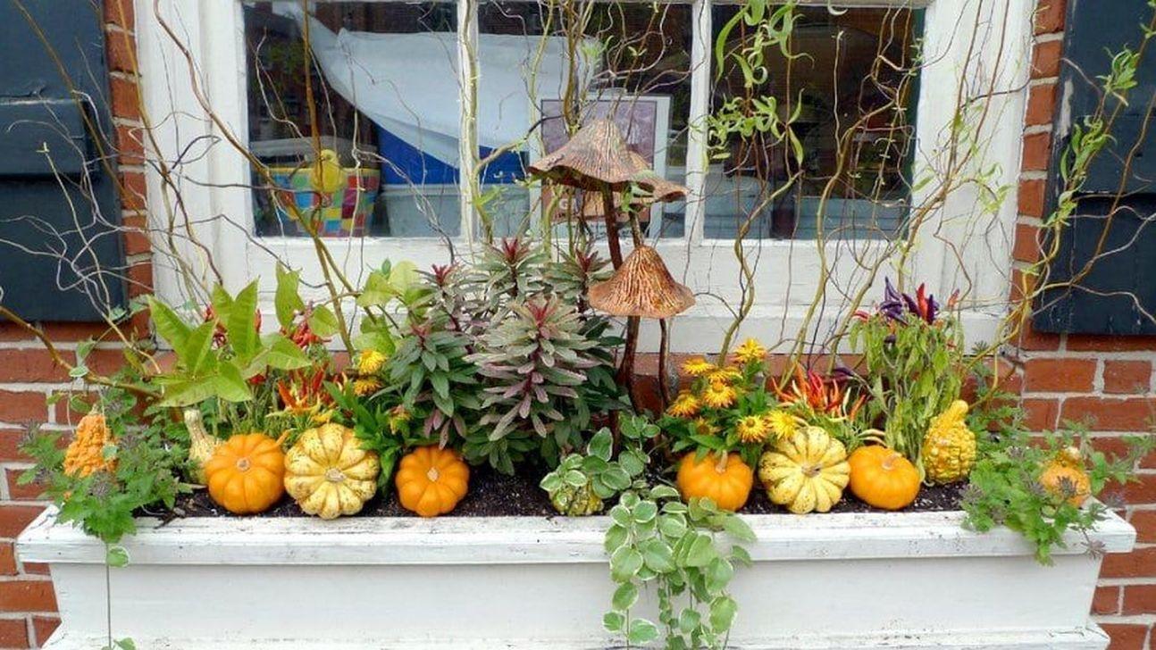 Мини огород на собственном балконе своими руками