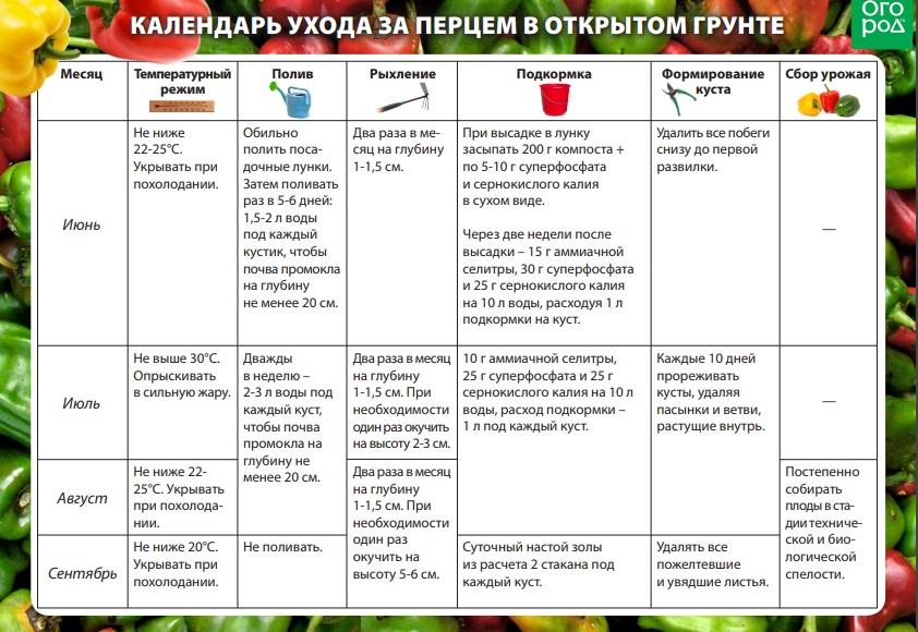 Чем лучше подкормить перцы после высадки в теплицу, какие удобрения и когда использовать
