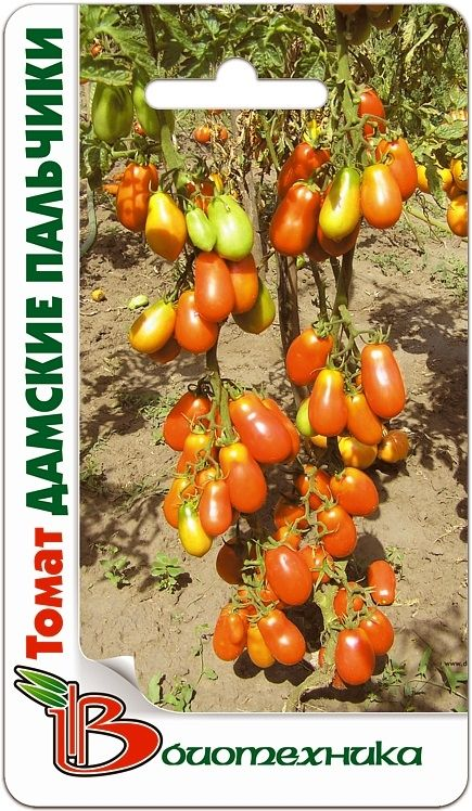 Томат сахарные пальчики: описание и характеристика сорта, урожайность с фото