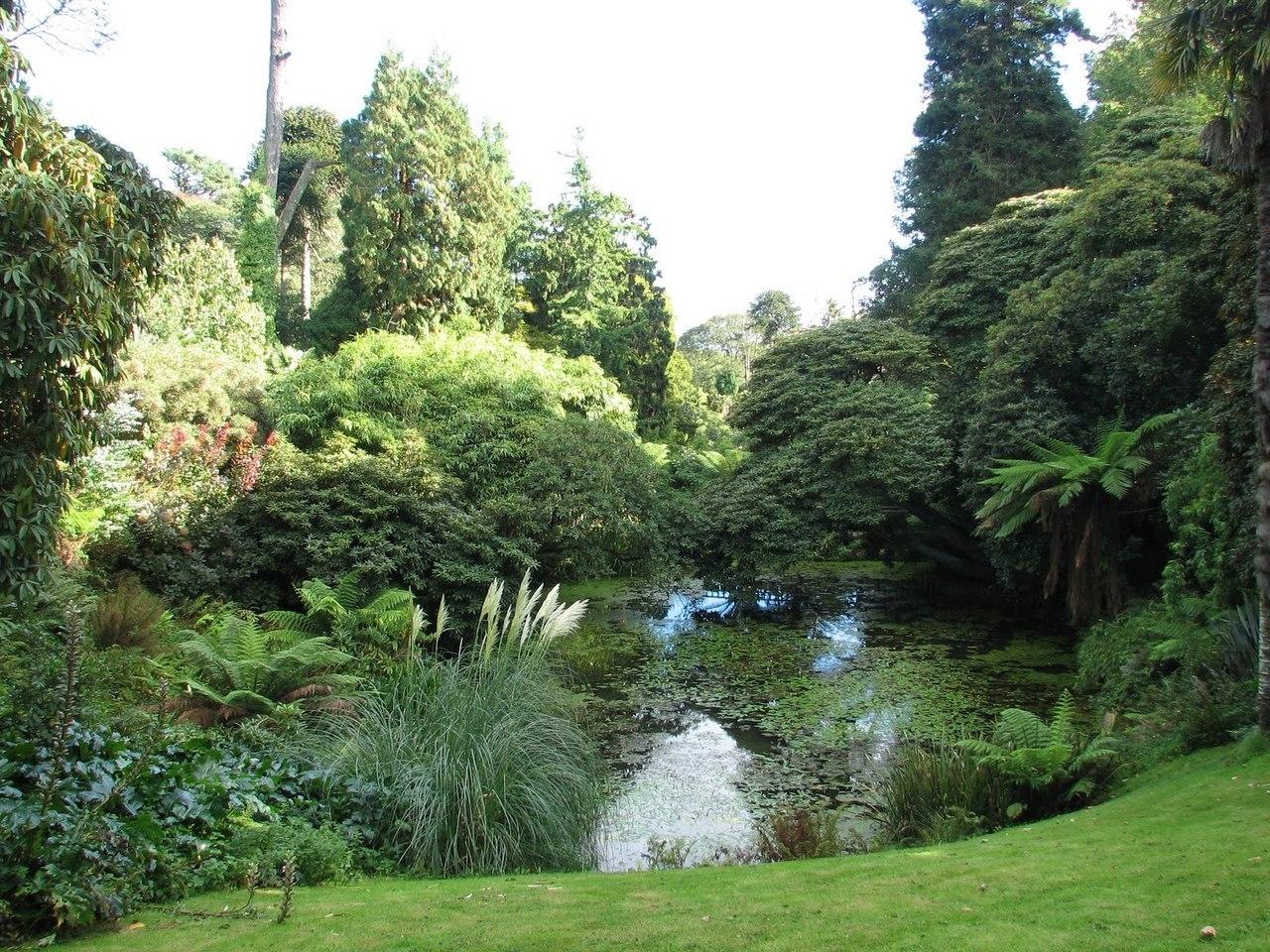 Затерянные сады хелигана: фото, описание, как добраться