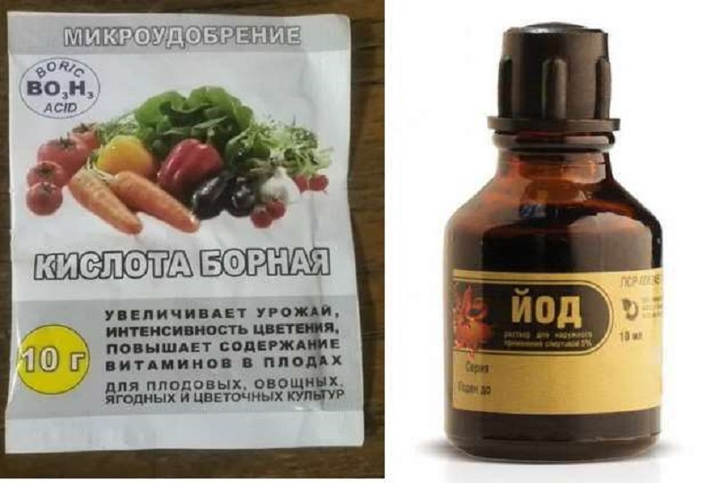 Борная кислота для помидоров: опрыскивание томатов, польза или вред + видео