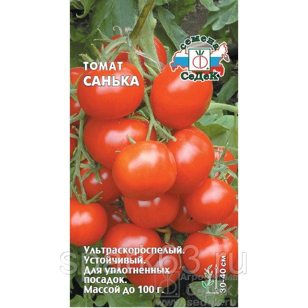 Томат санька - характеристика и описание сорта, основные правила выращивания