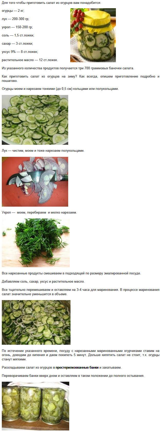 Как солить огурцы на зиму: 20 простых пошаговых рецептов, правила приготовления