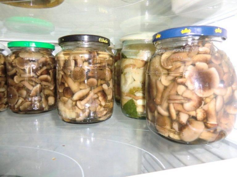 Сколько и как хранить маринованные грибы в домашних условиях