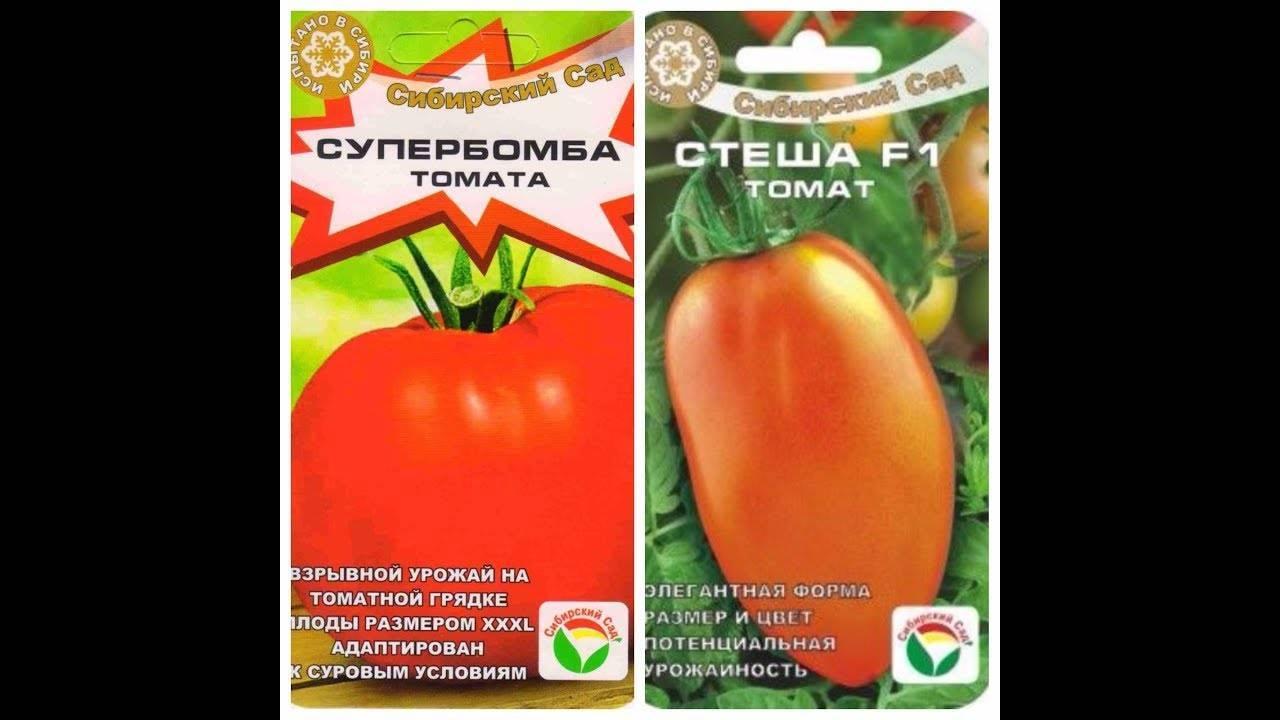 Томат супербомба: фото с описанием, характеристика сорта, урожайность, отзывы  — vkmp