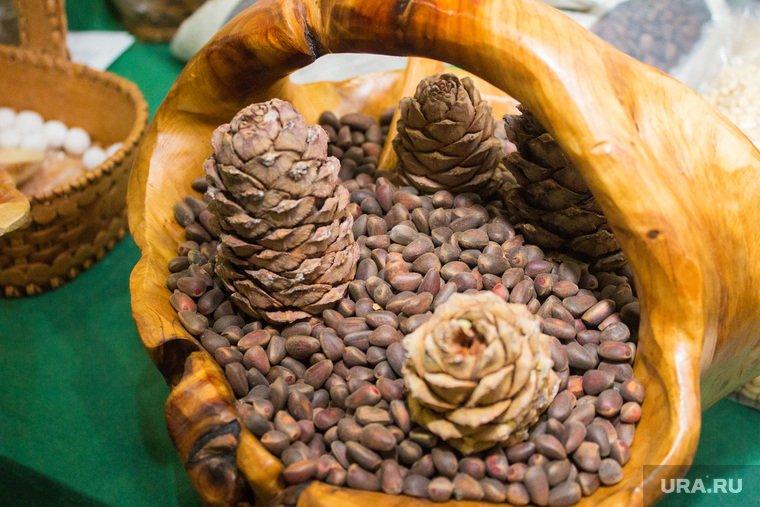 Кедровые орехи: полезные и лечебные свойства, применение, противопоказания. применение настойки и отвара из скорлупы, шелухи кедрового ореха для лечения миомы