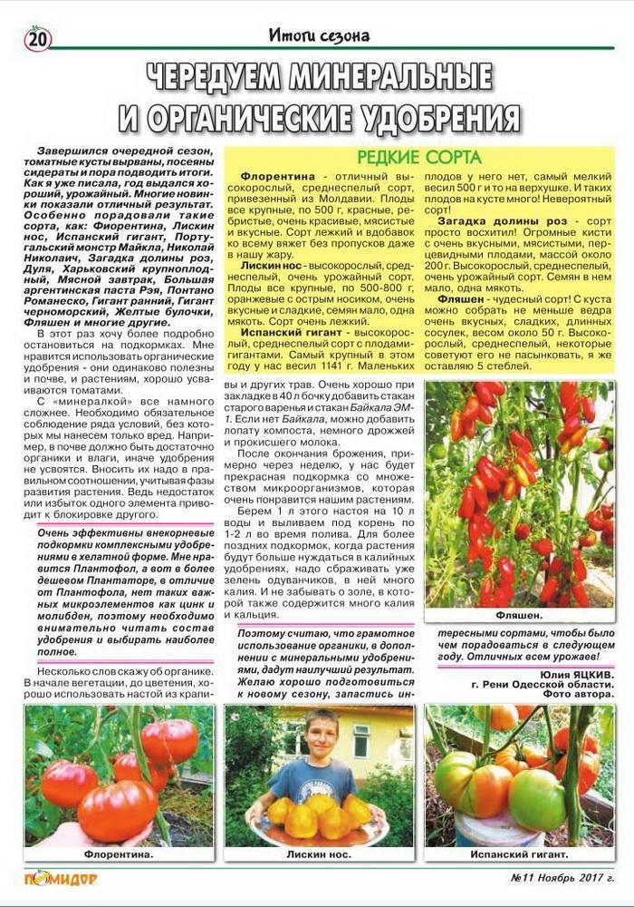 Высокорослые томаты для теплиц высокоурожайные - описание с фото