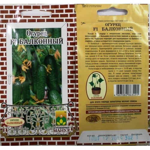 Комнатные огурцы: выращивание зимой на подоконнике или балконе