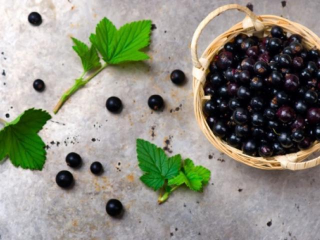 Белая смородина: калорийность, состав, полезные свойства и противопоказания